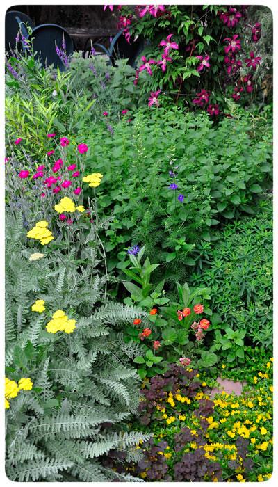 Garden-colors
