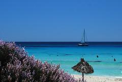 Mitjorn beach, Formentera (Paul_Masters) Tags: holiday sunshine spain mediterranean naturism formentera finca holidayhome balearics naturists