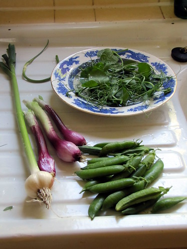 First produce from garden