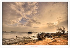 Back To Life (Damon | Photography) Tags: landscape nikon sigma kuwait damon clp sigma1020mm d90 72mm nikond90
