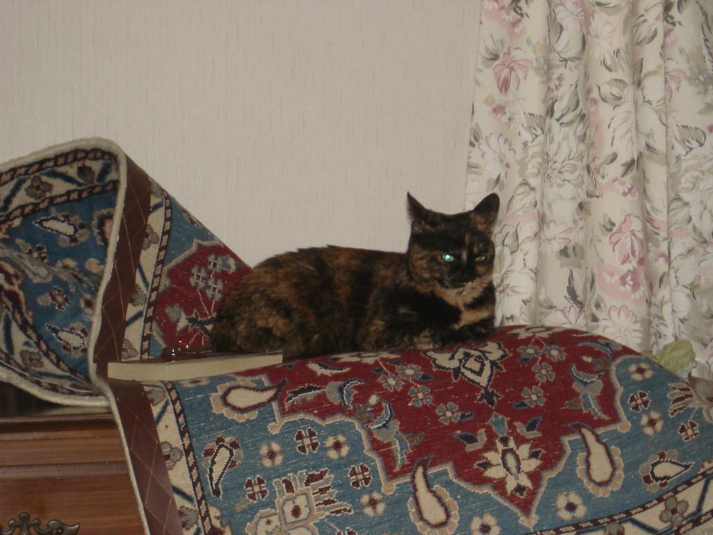 gypsy-rug
