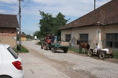 2010_Bihar_Vasaskfalva_0621 (emzepe) Tags: horse cheval traktor village carriage behind cart drawn transylvania pferd transilvania romanian 2010 kirnduls lovas utas passangers kocsi rdekes erdly nyr falu nyri ardeal jnius siebenbrgen vicces rumanien szekr cigny romnia transylvanien balkn lovaskocsi pietroasa utasok mulatsgos utnfut vasakfalva