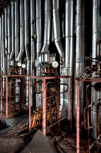 ECVB organ