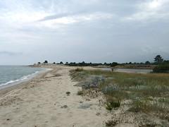 La plage le long de l'étang de Palu à l'arrivée vers l'embouchure