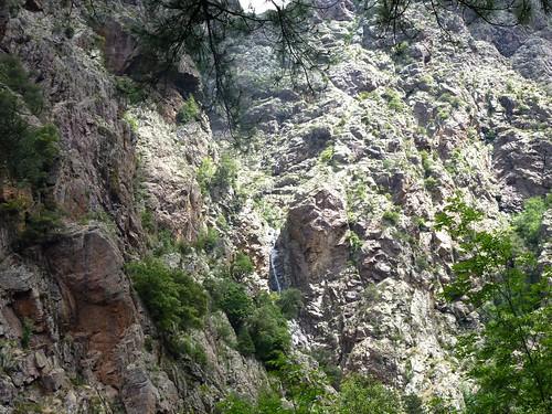 Remontée du Fangu : vers le demi-tour, on aperçoit le canyon du ruisseau de Bocca Rossa descendant de Tana di l'Orsu