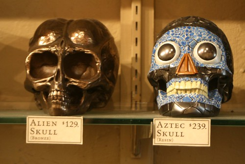 Skulls at Evolution
