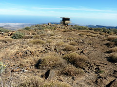 Gran Canaria - Pozo de las Nieves & Surroundings in the Spring