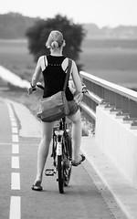 Testdrive on Ute's bike (Boudewijn Berends) Tags: road bridge sun netherlands grass bike sheep mila ute sparta asphalt kampen weiland schapen moederfiets