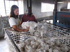 3a. At the ginnery, cotton lint ready to compress into bales, Gulu