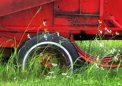 new holland - farm machinery (windseed) Tags: red canada green grass rain saturated parking country farming machine wildflowers farmequipment newholland canadianprairie