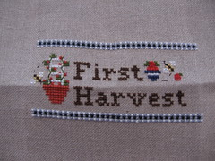 070710 First Harvest finish 004