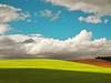 Beyond the shadow (__Blanca__) Tags: sky verde field clouds luces paseo cielo nubes campo sombras ocre nwn turquesa cerrato artistictreasurechest updatecollection ucreleased aguachal quécalorrrrrrrrrrr