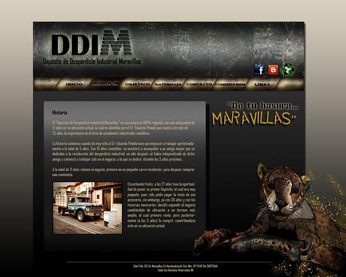 Webpage - DDIM