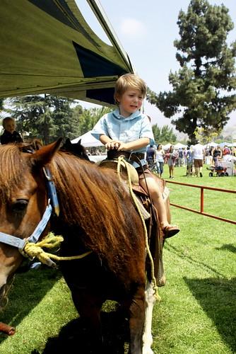 horsie? not