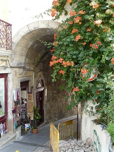 Calles de Coimbra Foto 2