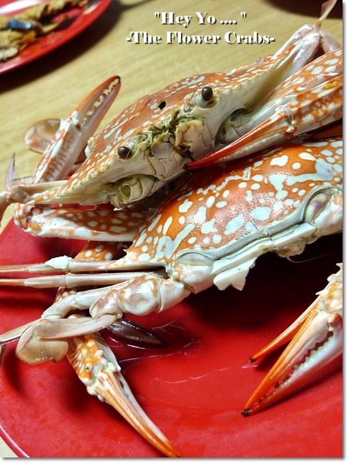 Steamed Flower Crabs