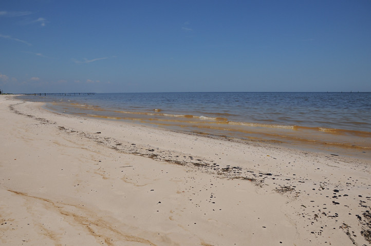 oil on the beach_7595 web