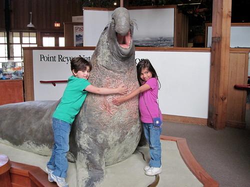 Point Reyes 20100624