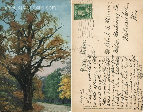 POSTCARD: Waiting and Hoping (7-10-1910)