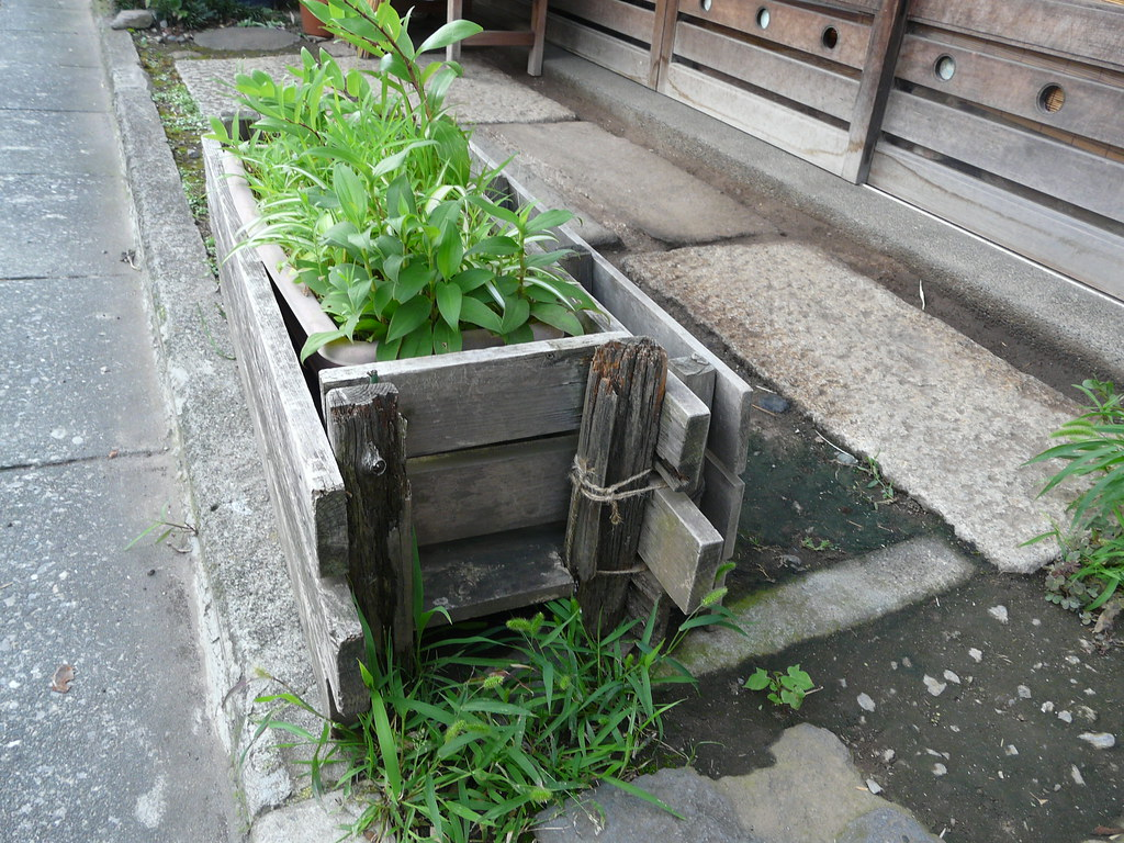 Planter in Yanaka