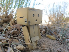 IMG_1387 (Day with Danbo) Tags: toy toys actionfigure danbo danboard