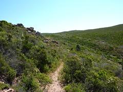 Le sentier des Tre Padule depuis la RN198 : arrivée sur le plateau