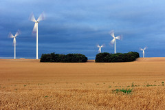 windmills (wunderskatz) Tags: blue sky plant windmill clouds energy hungary power wind wheat clean friendly environment rotation safe protection eco renewable windgenerator bony windengine