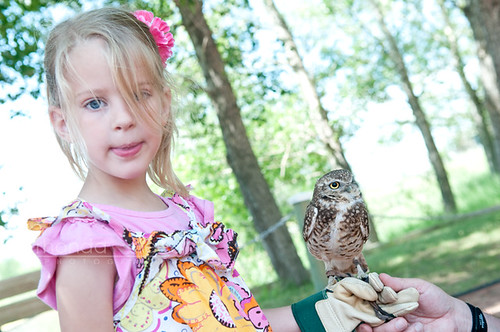 Lucy and the mini owl