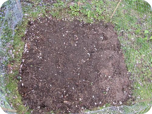 small vegetable garden dirt