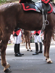 IMG_5391 ID (bootsservice) Tags: horses horse paris army cheval spurs uniform boots cavalier uniforms rider garde cavalry bottes riders armée chevaux uniforme cavaliers cavalerie uniformes rinding republicaine eperons