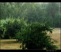 avete mai provato... (mariarita.g) Tags: estate acqua pioggia aria 2010 provarepercredere fotoemusica