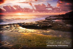 Sunshine s (MORIGRAPHY) Tags: harbourbridge watsonbay cronullabeach turimettabeach warriewoodbeach beachinsydney coffhabour