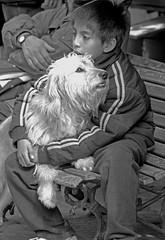 Amistad (carlos_ar2000) Tags: street friends boy dog amigos argentina bench calle kid buenosaires chica banco can perro friendly amistad santelmo worldwidephotowalk2010