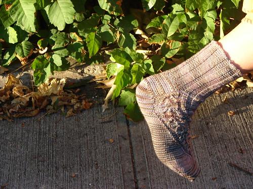 Wanida Socks