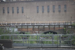 10 Foot Shrub (datachump) Tags: uk london station graffiti tag shrub battersea throw trackside 10ft powere 10foot