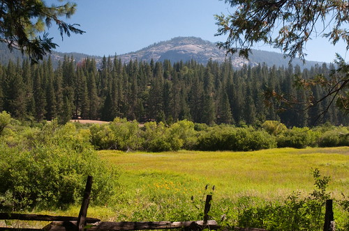 Hikes in Wawona and Mariposa Grove
