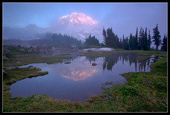 Spray Park - Mt Rainier National Park (Mike Hornblade) Tags: sunset nature washington rainier nationalparks mtrainier za alpenglow spraypark variosonnar163528za variosonnart281635