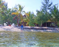Little Cay Snorkel www.UtilaGuide.com