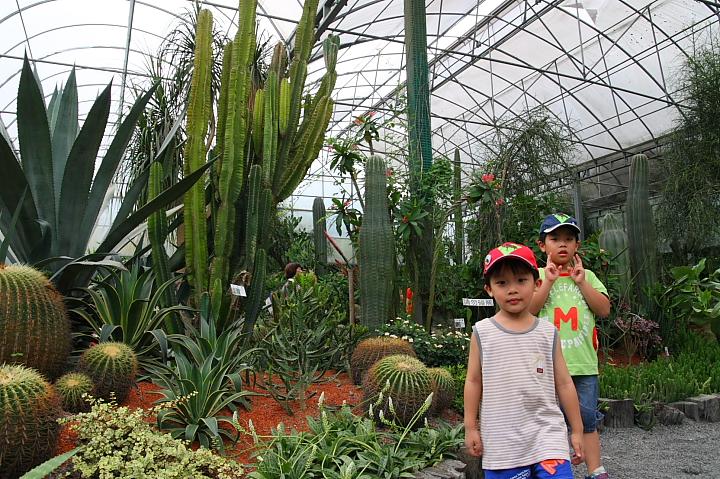綠世界生態農場0022