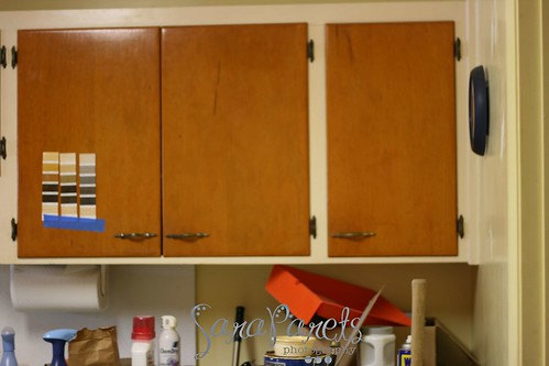 David's kitchen cabinets