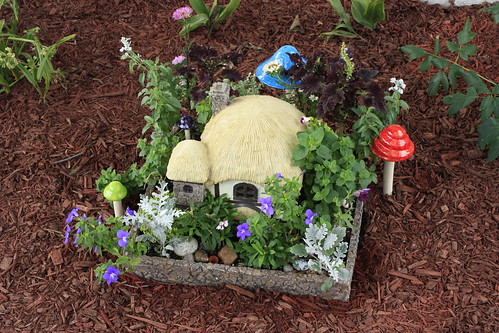 Fairy House with Mushrooms
