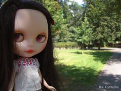 Park...