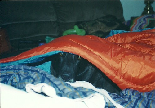 Grady in sleeping bag