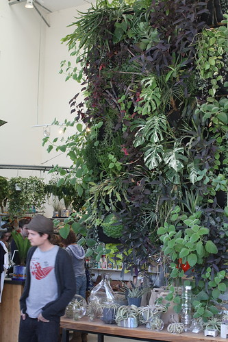 Green wall at Flora Grubb