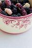 mulberries (ion-bogdan dumitrescu) Tags: summer fruits childhood fruit child sunny bowl fresh dude ruby ripe mulberry mulberries dud bitzi morusalba mg4446 morusnigra ibdp ibdpro wwwibdpro ionbogdandumitrescuphotography stocksyprop