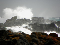 sea rocks fuerteventura (Flopsy Lockwood) Tags: sea coast rocks waves spray rough volcanic basalt