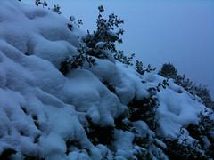 Snow in Tunbridge Wells