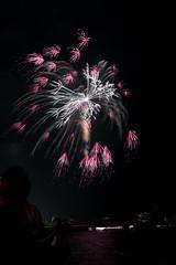第23回東京湾大華火祭 燻し銀の舞