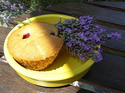 muffin et lavande.jpg