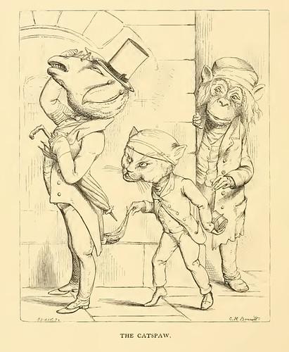 Simius et Feles